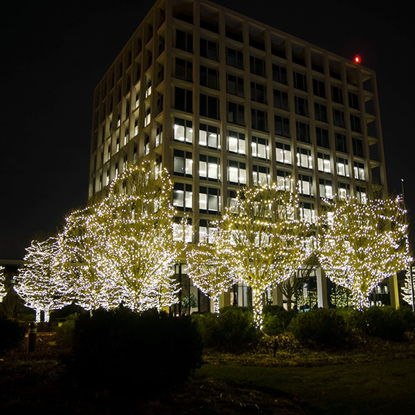 Northern Holiday Lighting Commercial Holiday Lighting